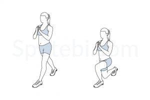 split-squat-exercise-illustration