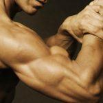 """腕を太くするには""""上腕三頭筋""""が重要!!二頭筋より三頭筋を鍛えるべき理由や方法4選!"""